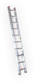 Extension & Straight Ladder